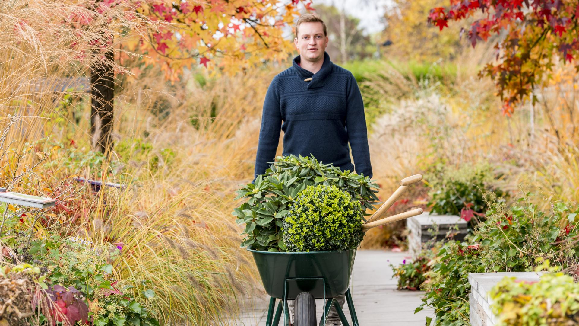 Die richtige Pflege für den Ziergarten im Herbst